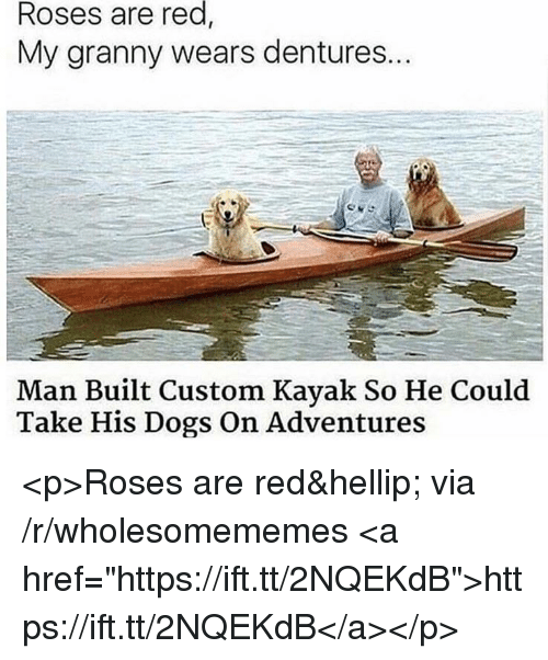 """Dogs, Kayak, and Red: red,  Roses are  My granny wears dentures..  Man Built Custom Kayak So He Could  Take His Dogs On Adventures <p>Roses are red&hellip; via /r/wholesomememes <a href=""""https://ift.tt/2NQEKdB"""">https://ift.tt/2NQEKdB</a></p>"""