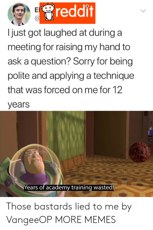 Dank, Memes, and Reddit: reddit  El  just got laughed at during a  meeting for raising my hand to  ask a question? Sorry for being  polite and applying a technique  that was forced on me for 12  years  VangeeOP  Years of academy training wasted! Those bastards lied to me by VangeeOP MORE MEMES