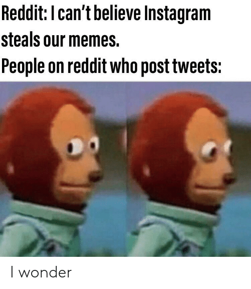 Reddit I Can't Believe Instagram Steals Our Memes People on