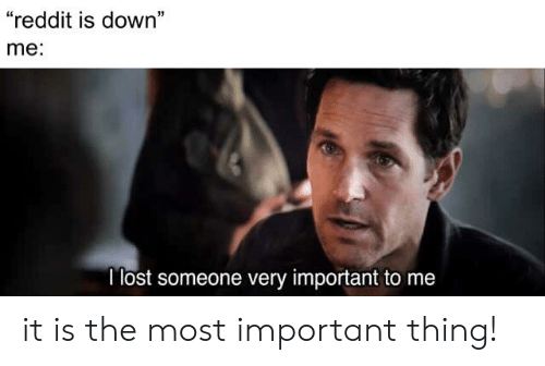 "Reddit, Lost, and Down: ""reddit is down""  me:  I lost someone very important to me it is the most important thing!"