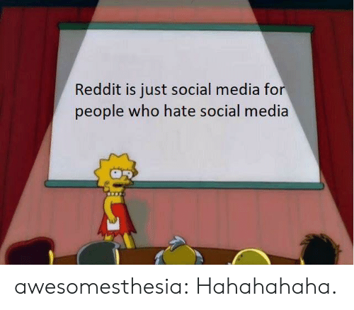 Reddit, Social Media, and Tumblr: Reddit is just social media for  people who hate social media awesomesthesia:  Hahahahaha.