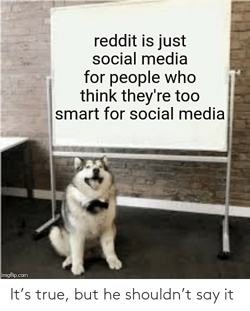 Is Just: reddit is just  social media  for people who  think they're too  smart for social media  imgflip.com It's true, but he shouldn't say it