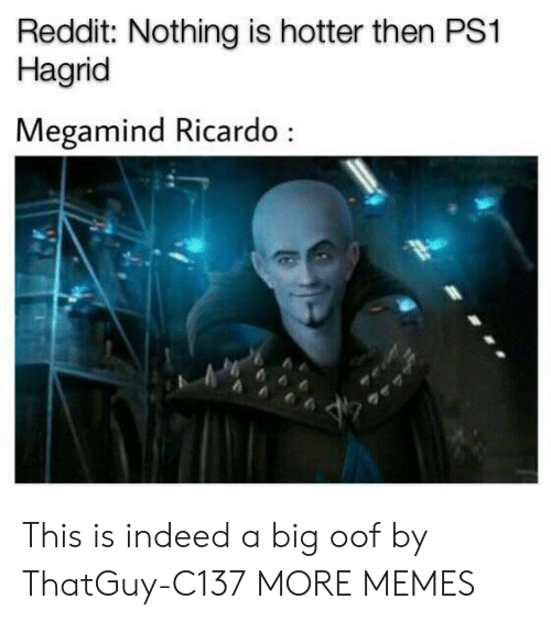 Dank, Memes, and Reddit: Reddit: Nothing is hotter then PS1  Hagrid  Megamind Ricardo This is indeed a big oof by ThatGuy-C137 MORE MEMES