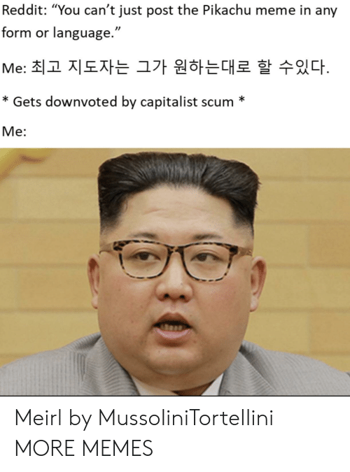 "Dank, Meme, and Memes: Reddit: ""You can't just post the Pikachu meme in any  form or language.""  Me: 최고 지도자는 그가 원하는대로 할 수있다.  * Gets downvoted by capitalist scum *  Me: Meirl by MussoIiniTorteIIini MORE MEMES"