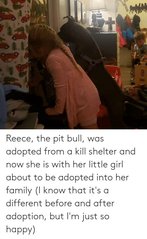 pit bull: Reece, the pit bull, was adopted from a kill shelter and now she is with her little girl about to be adopted into her family (I know that it's a different before and after adoption, but I'm just so happy)