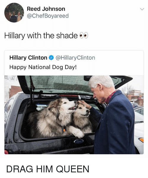 Hillary Clinton, Shade, and Queen: Reed Johnson  @ChefBoyareed  Hillary with the shade  Hillary Clinton @HillaryClinton  Happy National Dog Day! DRAG HIM QUEEN