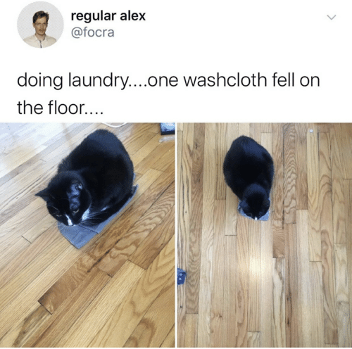 Laundry, One, and Alex: regular alex  @focra  doing laundry....one washcloth fell on  the floor....