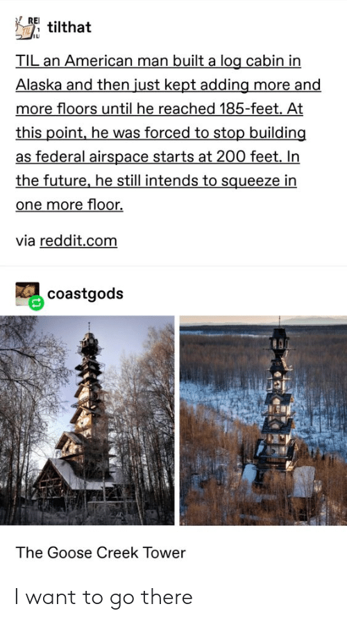 Future, Reddit, and Tumblr: REI  tilthat  TIL an American man built a log cabin in  Alaska and then just kept adding more and  more floors until he reached 185-feet. At  this point, he was forced to stop building  as federal airspace starts at 200 feet. In  the future, he still intends to squeeze in  one more floor.  via reddit.com  coastgods  The Goose OCreek Tower I want to go there