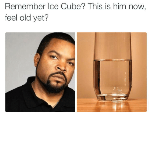 Now Feel: Remember Ice Cube? This is him now  feel old yet? theawesomeadventurer:fuck ya'll