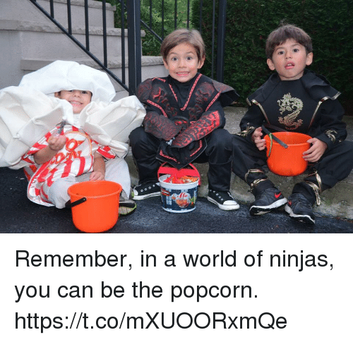 Memes, Popcorn, and World: Remember, in a world of ninjas, you can be the popcorn. https://t.co/mXUOORxmQe