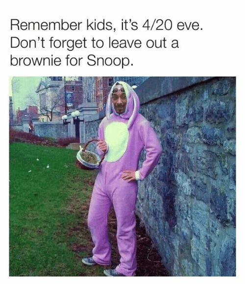 Dank, Snoop, and Kids: Remember kids, it's 4/20 eve  Don't forget to leave out a  brownie for Snoop.