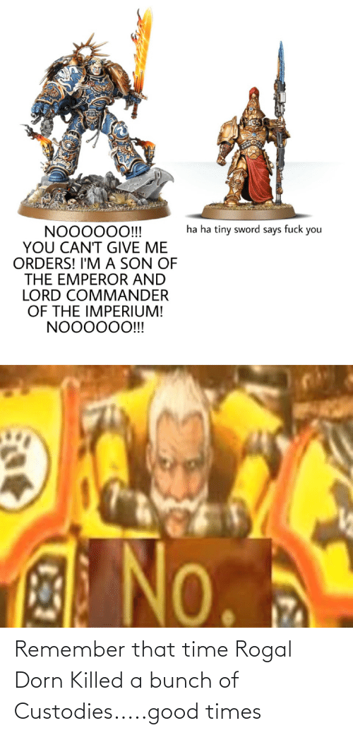 Killed: Remember that time Rogal Dorn Killed a bunch of Custodies.....good times