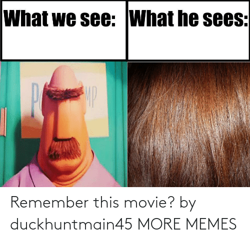 Movie: Remember this movie? by duckhuntmain45 MORE MEMES