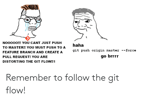 flow: Remember to follow the git flow!