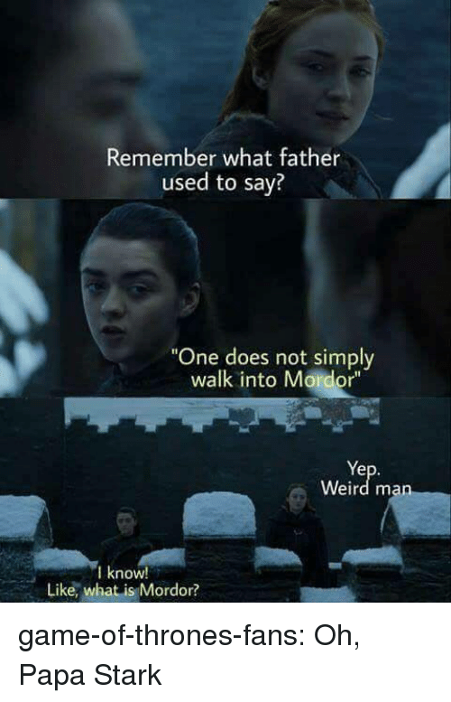 """Game of Thrones, Tumblr, and Weird: Remember what father  used to say?  """"One does not simply  walk into Mordor""""  Ye  Weird man  know!  Like, what is Mordor? game-of-thrones-fans:  Oh, Papa Stark"""