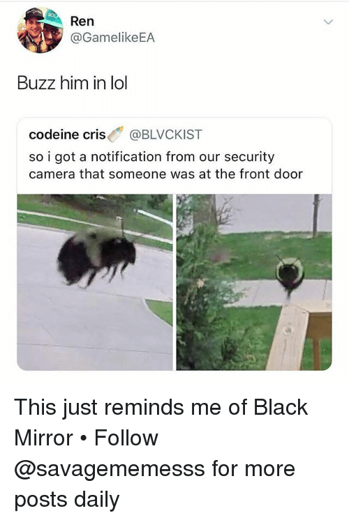 Lol, Memes, and Black: Ren  GamelikeEA  Buzz him in lol  codeine cris @BLVCKIST  so i got a notification from our security  camera that someone was at the front door This just reminds me of Black Mirror • Follow @savagememesss for more posts daily
