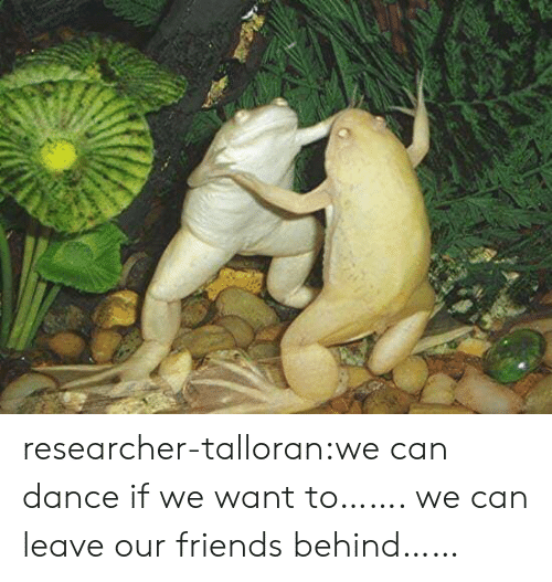 Friends, Target, and Tumblr: researcher-talloran:we can dance if we want to……. we can leave our friends behind……