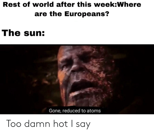 World, Dank Memes, and Sun: Rest of world after this week:Where  are the Europeans?  The sun:  Gone, reduced to atoms Too damn hot I say