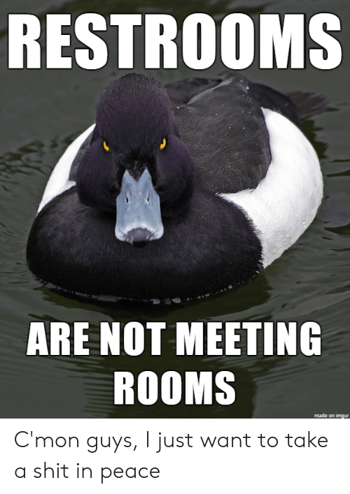 cmon-guys: RESTROOMS  ARE NOT MEETING  ROOMS  1  made on imgur C'mon guys, I just want to take a shit in peace