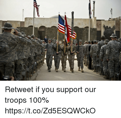 Anaconda, Memes, and 🤖: Retweet if you support our troops 100% https://t.co/Zd5ESQWCkO