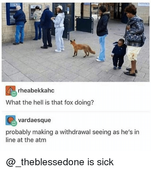 Funny, Sick, and Hell: rheabekkahc  What the hell is that fox doing?  vardaesque  probably making a withdrawal seeing as he's in  line at the atm @_theblessedone is sick