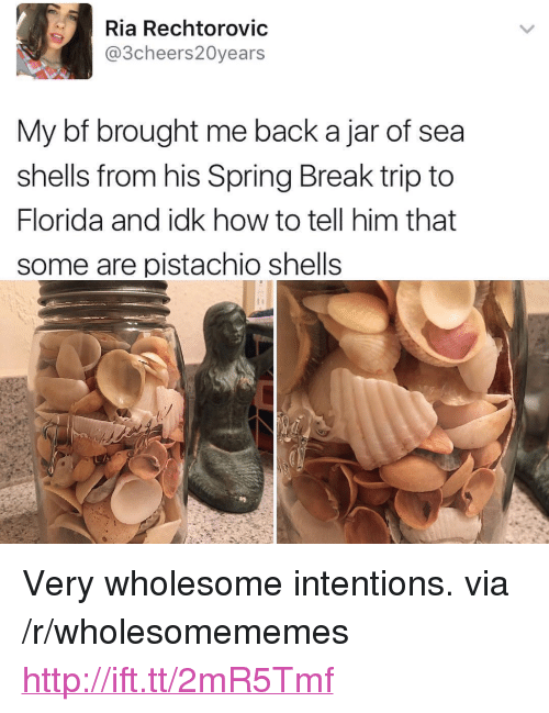 "Spring Break, Break, and Florida: Ria Rechtorovic  @3cheers20years  My bf brought me back a jar of sea  shells from his Spring Break trip to  Florida and idk how to tell him that  some are pistachio shells <p>Very wholesome intentions. via /r/wholesomememes <a href=""http://ift.tt/2mR5Tmf"">http://ift.tt/2mR5Tmf</a></p>"