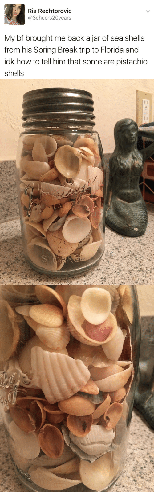 Spring Break, Break, and Florida: Ria Rechtorovic  @3cheers20years  My bf brought me back a jar of sea shells  from his Spring Break trip to Florida and  idk how to tell him that some are pistachio  Shells