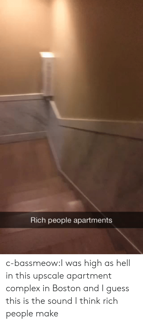 Apartments: Rich people apartments c-bassmeow:I was high as hell in this upscale apartment  complex in Boston and I guess this is the sound I think rich people make