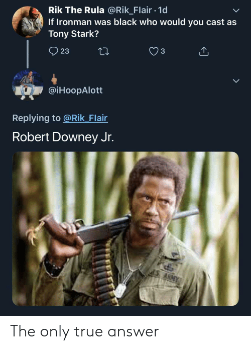 Downey: Rik The Rula @Rik_Flair 1d  If Ironman was black who would you cast as  Tony Stark?  23  @iHoopAlott  Replying to @Rik Flair  Robert Downey Jr. The only true answer