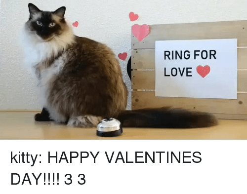 happy valentines: RING FOR  LOVE kitty:  HAPPY VALENTINES DAY!!!! 3 3