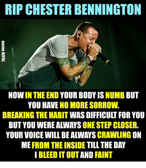 Habited: RIP CHESTER BENNINGTON  NOW IN THE END YOUR BODY IS NUMB BUT  YOU HAVE NO MORE SORROW.  BREAKING THE HABIT WAS DIFFICULT FOR YOU  BUT YOU WERE ALWAYS ONE STEP CLOSER.  YOUR VOICE WILL BE ALWAYS CRAWLING ON  ME FROM THE INSIDE TILL THE DAY  I BLEED IT OUT AND FAINT