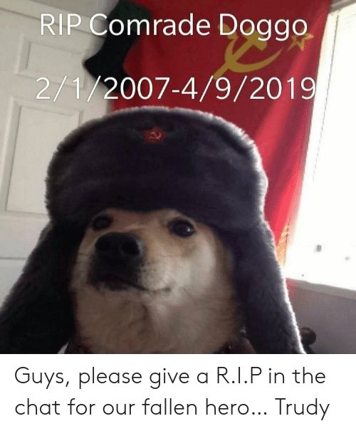 Trudy: RIP Comrade Doggo  2/1/2007-4/9/2019 Guys, please give a R.I.P in the chat for our fallen hero… Trudy