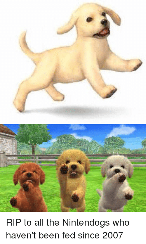 nintendogs: RIP to all the Nintendogs who haven't been fed since 2007