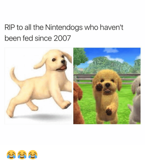nintendogs: RIP to all the Nintendogs who haven't  been fed since 2007 😂😂😂