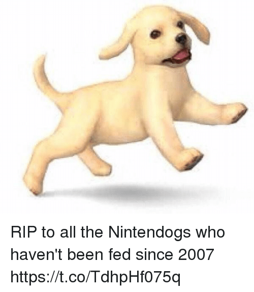 nintendogs: RIP to all the Nintendogs who haven't been fed since 2007 https://t.co/TdhpHf075q
