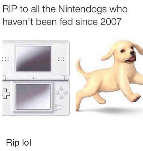 nintendogs: RIP to all the Nintendogs who  haven't been fed since 2007 Rip lol