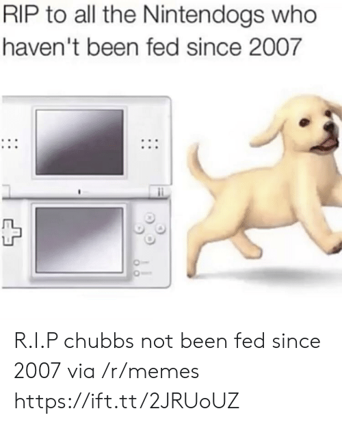 nintendogs: RIP to all the Nintendogs who  haven't been fed since 2007 R.I.P chubbs not been fed since 2007 via /r/memes https://ift.tt/2JRUoUZ