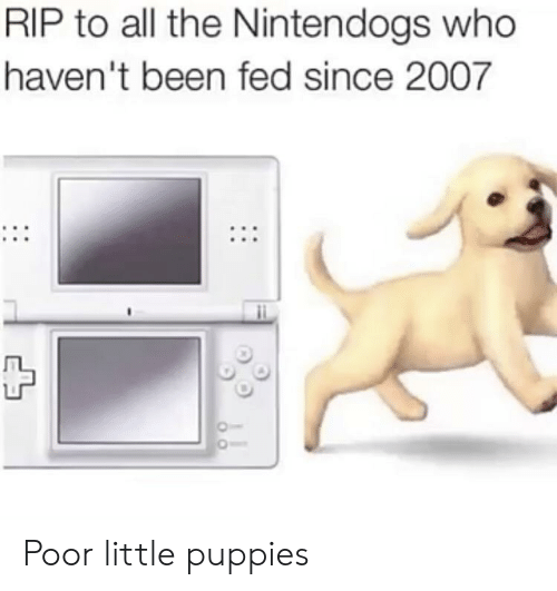 nintendogs: RIP to all the Nintendogs who  haven't been fed since 2007 Poor little puppies