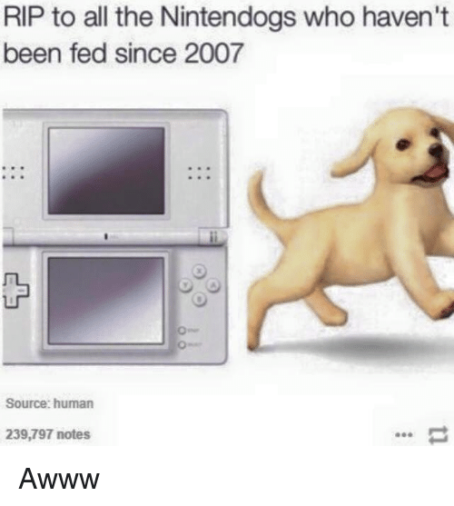 nintendogs: RIP to all the Nintendogs who haven't  been fed since 2007  Source: human  239,797 notes Awww