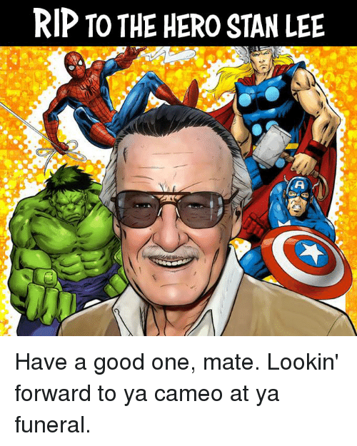 Memes, Stan, and Stan Lee: RIP TO THE HERO STAN LEE Have a good one, mate. Lookin' forward to ya cameo at ya funeral.