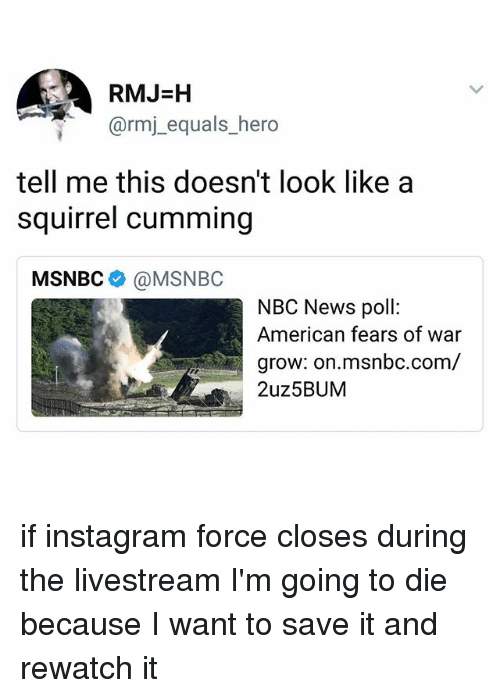 Instagram, Ironic, and News: RMJ-H  @rmj_equals_hero  tell me this doesn't look like a  squirrel cumming  MSNBC @MSNBC  NBC News poll:  American fears of war  grow: on.msnbc.com/  2uz5BUM if instagram force closes during the livestream I'm going to die because I want to save it and rewatch it