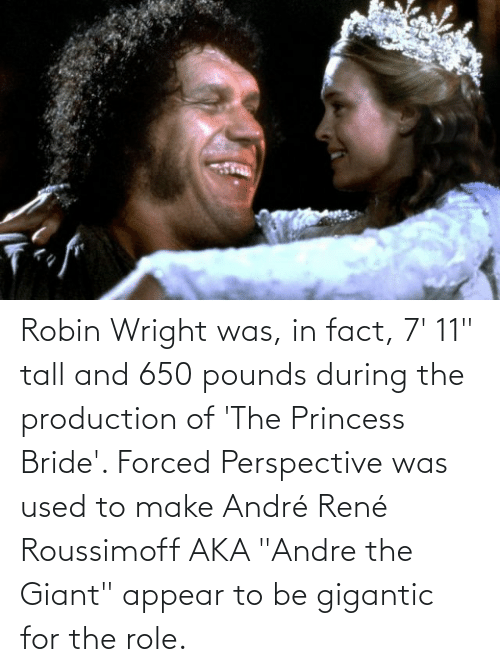 """gigantic: Robin Wright was, in fact, 7' 11"""" tall and 650 pounds during the production of 'The Princess Bride'. Forced Perspective was used to make André René Roussimoff AKA """"Andre the Giant"""" appear to be gigantic for the role."""