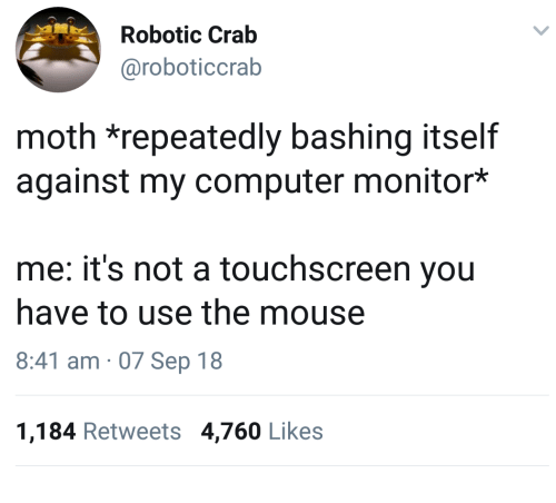 Computer, Mouse, and Crab: Robotic Crab  @roboticcrab  moth *repeatedly bashing itself  against my computer monitor*  me: it's not a touchscreen you  have to use the mouse  8:41 am 07 Sep 18  1,184 Retweets 4,760 Likes