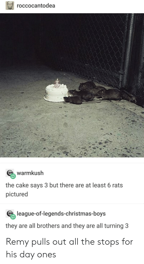 Christmas, League of Legends, and Tumblr: roccocantodea  warmkush  the cake says 3 but there are at least 6 rats  pictured  league-of-legends-christmas-boys  they are all brothers and they are all turning 3 Remy pulls out all the stops for his day ones