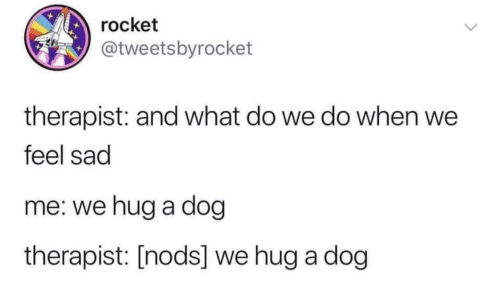 rocket: rocket  @tweetsbyrocket  therapist: and what do we do when we  feel sad  me: we hug a dog  therapist: [nods] we hug a dog