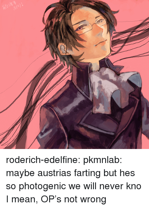 God, Target, and Tumblr: roderich-edelfine:  pkmnlab: maybe austrias farting but hes so photogenic we will never kno  I mean, OP's not wrong