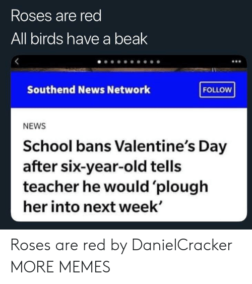Dank, Memes, and News: Roses are red  All birds have a beak  Southend News Network  FOLLOW  NEWS  School bans Valentine's Day  after six-year-old tells  teacher he would 'plough  her into next week' Roses are red by DanielCracker MORE MEMES