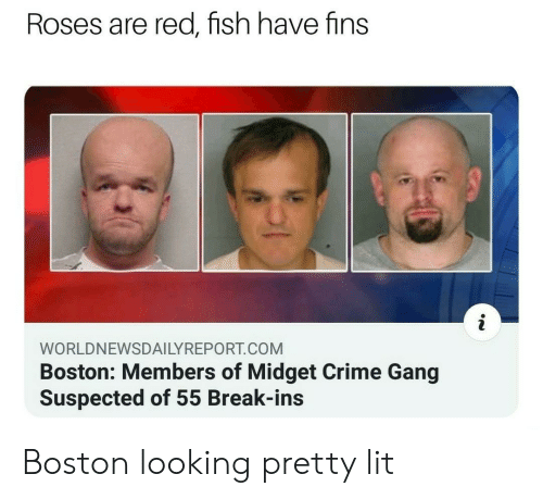 Crime, Lit, and Gang: Roses are red, fish have fins  WORLDNEWSDAILYREPORT.COM  Boston: Members of Midget Crime Gang  Suspected of 55 Break-ins Boston looking pretty lit