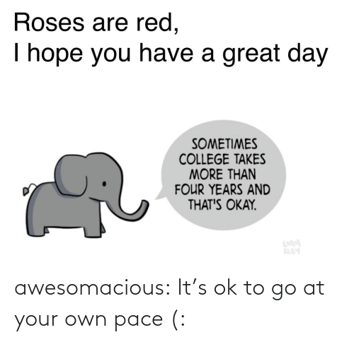 A Great: Roses are red,  I hope you have a great day  SOMETIMES  COLLEGE TAKES  MORE THAN  FOUR YEARS AND  THAT'S OKAY.  EMM  ROY awesomacious:  It's ok to go at your own pace (: