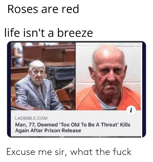 roses: Roses are red  life isn't a breeze  LADBIBLE.COM  Man, 77, Deemed 'Too Old To Be A Threat' Kills  Again After Prison Release Excuse me sir, what the fuck